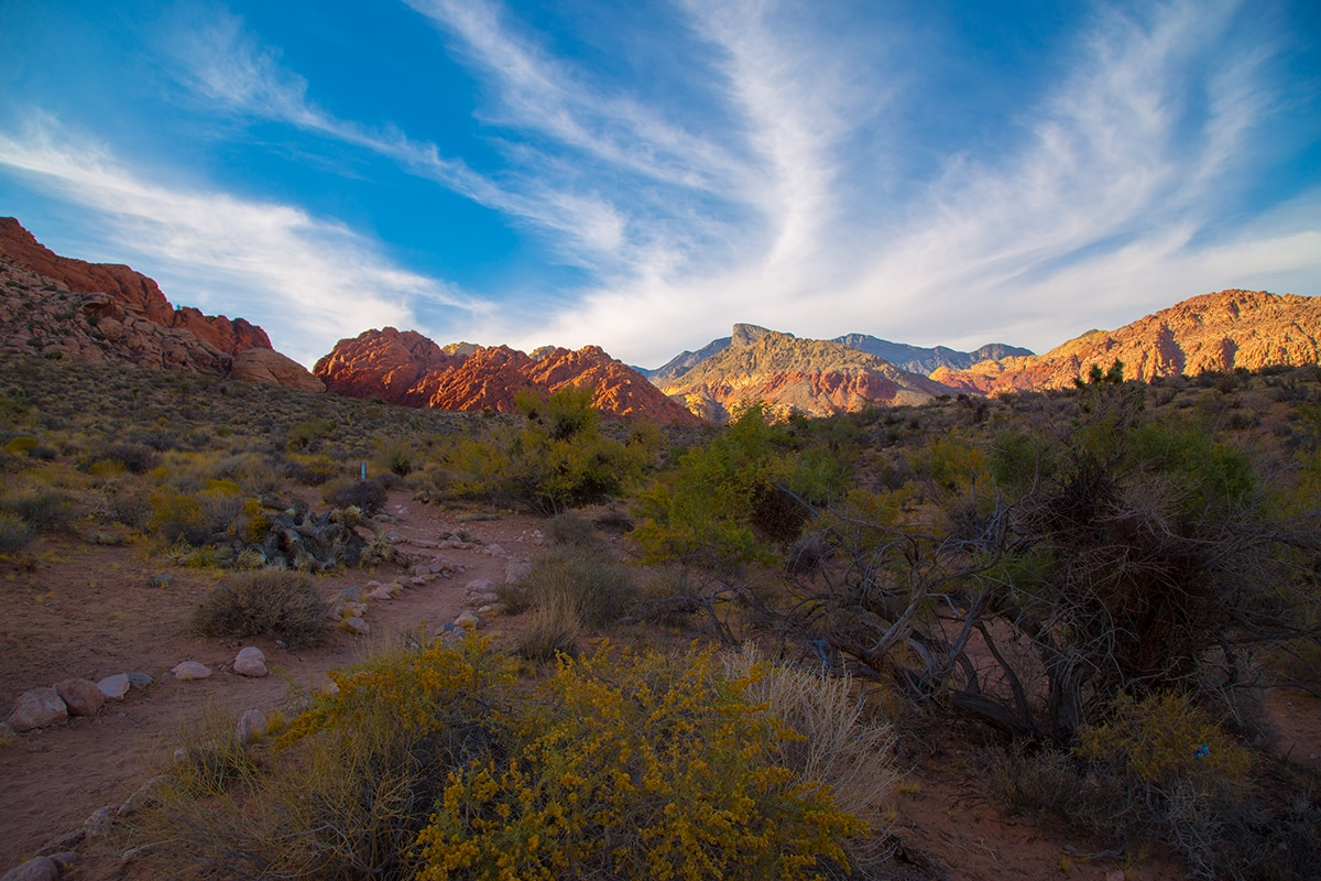 Take a hike among the scenic red hills of Calico Basin.